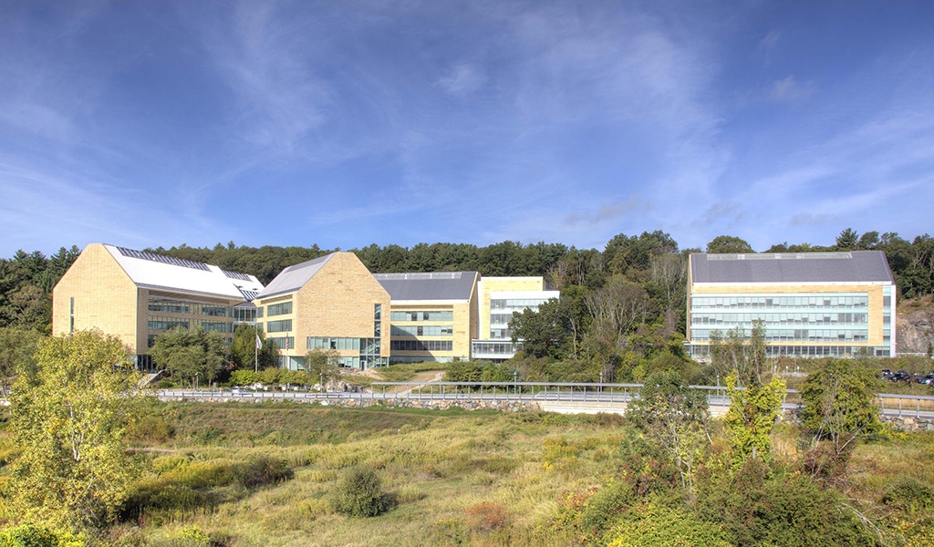 Astra-Zeneca's multi-building campus is backed by natural woodlands.