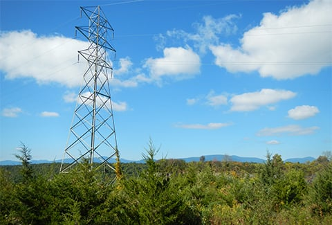 Electric power lines traverse a remote area in upstate New York.
