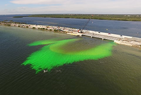 Green dye shows water circulating as it flows under a bridge.