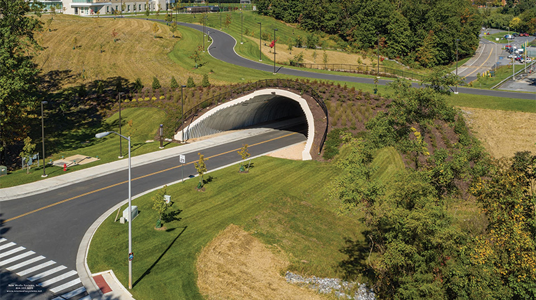 View of the JMU's Land Bridge and tunnel structure over Driver Drive with new plantings and multi-modal pathway.